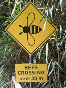 Warnschild das Bienen den Weg kreutzen